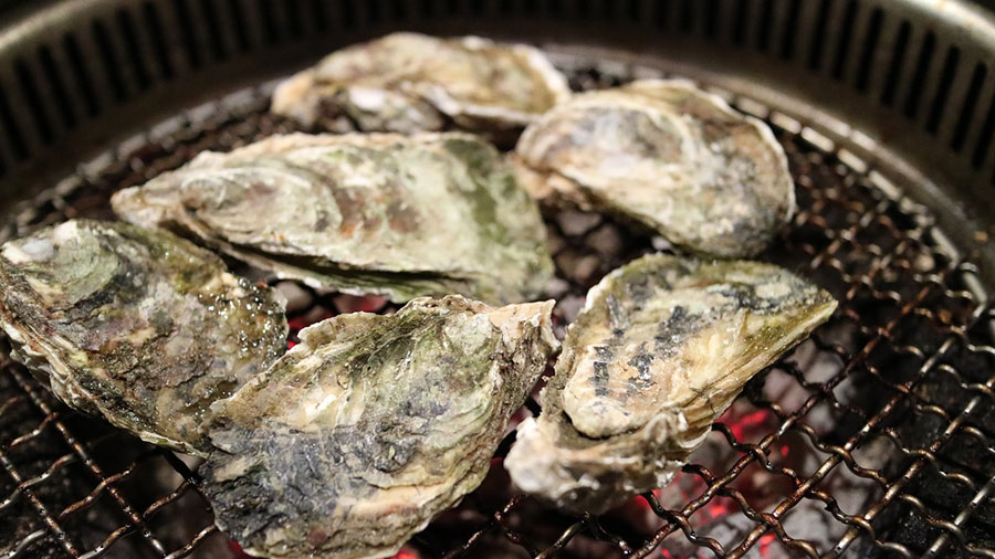 Cook and store fresh oysters the right way